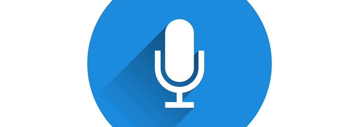 Comandi vocali per la guida dei disabili - Anteprima - Riparando
