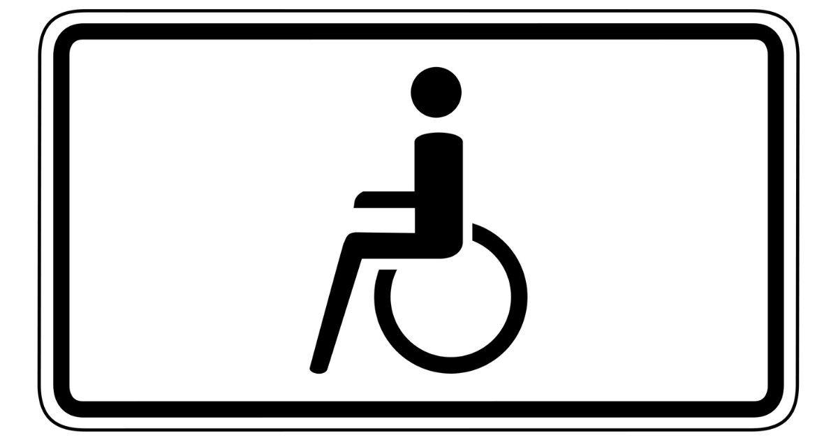 Comandi vocali per la guida dei disabili - Riparando