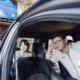 Hyundai SSZ Anteprima - Riparando
