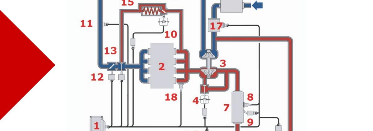Schema ricircolo gas di scarico Renault - Riparando